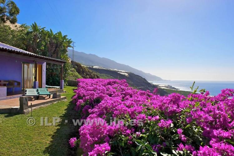 Villa/House for Sale, Las Norias, Tazacorte, La Palma - LP-Ta96 4