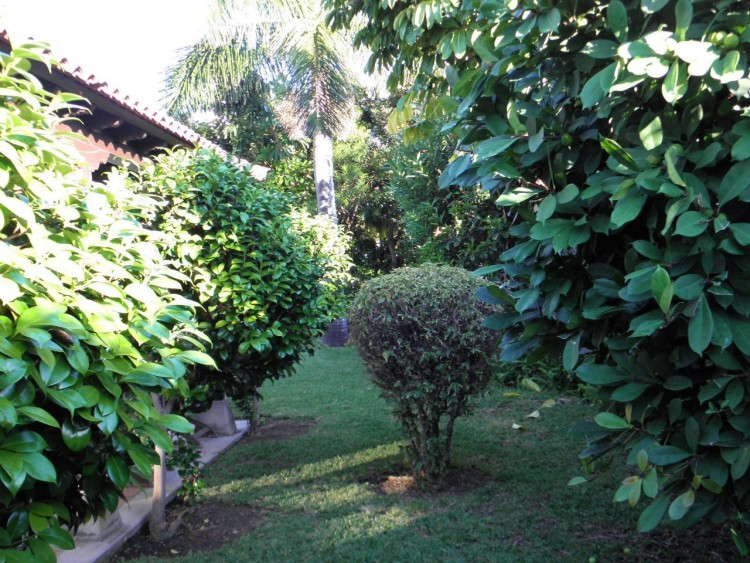 4 Bed  Villa/House for Sale, Puerto de la Cruz, Santa Cruz de Tenerife, Tenerife - PR-LUX0121VDV 4