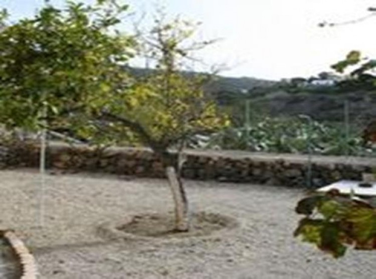 3 Bed  Villa/House for Sale, Guia De Isora, Tenerife - PG-D1762 15
