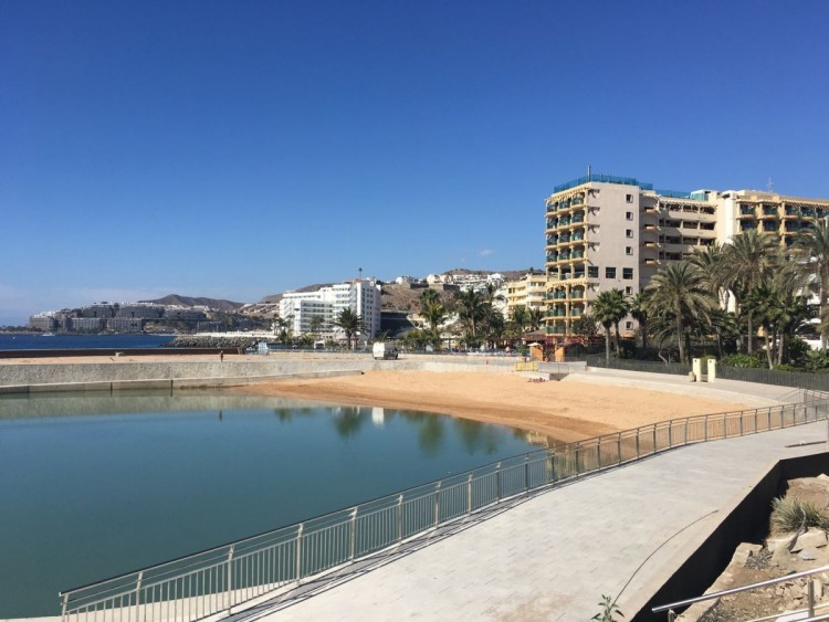 Commercial for Sale, Mogan, LAS PALMAS, Gran Canaria - BH-7981-OLF-2912 3