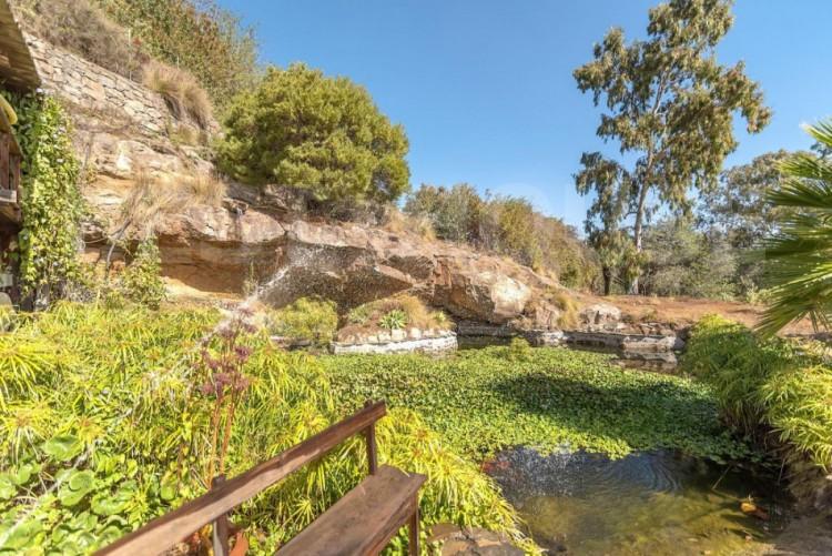 12 Bed  Villa/House for Sale, San Bartolome de Tirajana, LAS PALMAS, Gran Canaria - BH-8714-MIA-2912 3