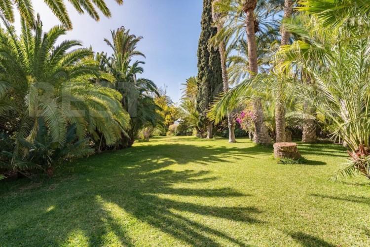 12 Bed  Villa/House for Sale, San Bartolome de Tirajana, LAS PALMAS, Gran Canaria - BH-8714-MIA-2912 4