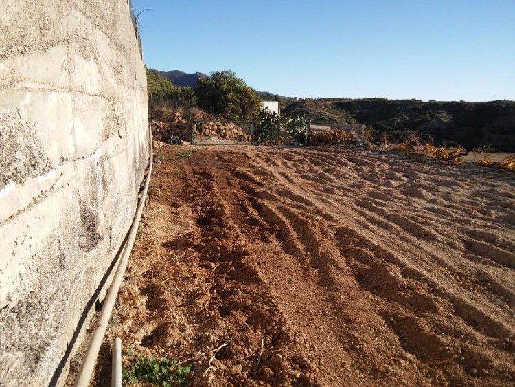 Land for Sale, San Miguel de Abona, Santa Cruz de Tenerife, Tenerife - IN-299 4