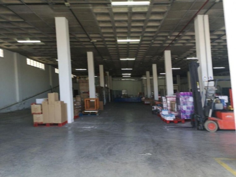 Commercial for Sale, Las Palmas, El Tablero, Gran Canaria - DI-15338 4