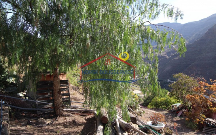 3 Bed  Country House/Finca for Sale, Arguineguin, Gran Canaria - NB-2364 7