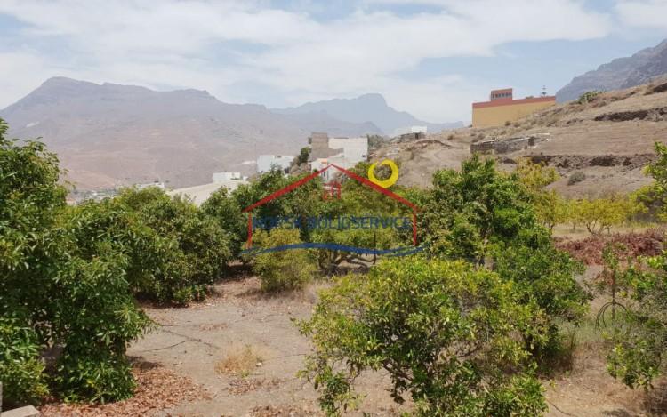 Country House/Finca for Sale, La Aldea de San Nicolás, Gran Canaria - NB-2395 13