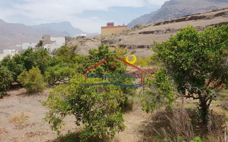 Country House/Finca for Sale, La Aldea de San Nicolás, Gran Canaria - NB-2395 5