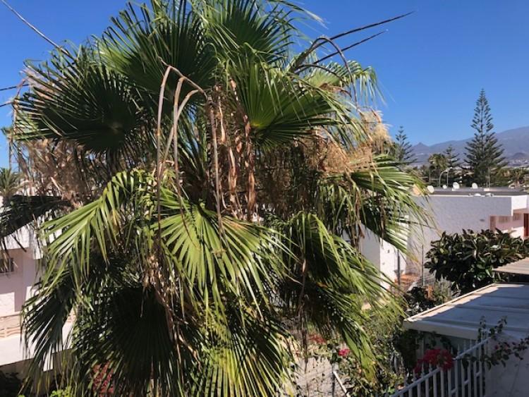 Flat / Apartment for Sale, Costa del Silencio, Arona, Tenerife - MP-ST0202-0 17