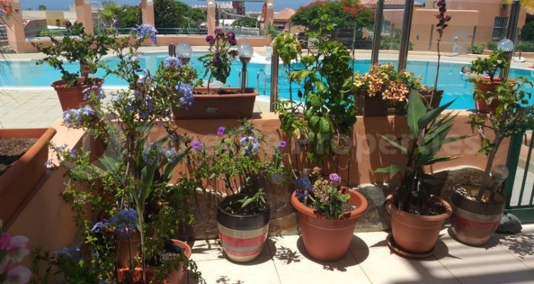 1 Bed  Flat / Apartment for Sale, El Madronal de Fañabe, Gran Canaria - TP-12747 15