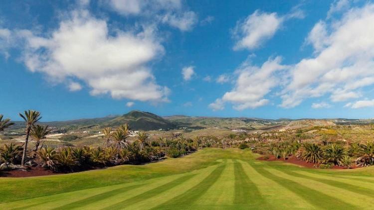 3 Bed  Land for Sale, Guia de Isora, Santa Cruz de Tenerife, Tenerife - YL-PW134 7