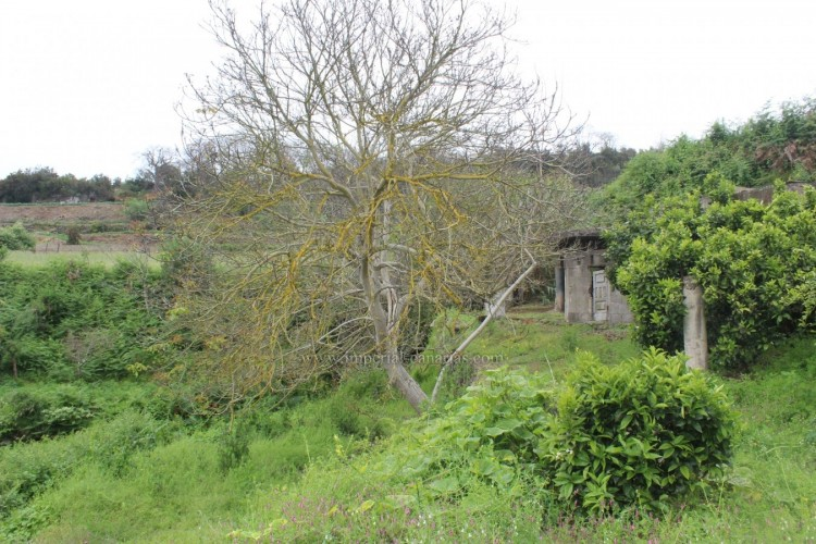 4 Bed  Villa/House for Sale, Los Realejos, Tenerife - IC-VCH10432 17