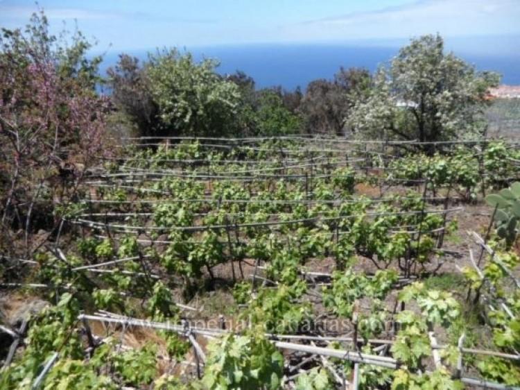 Land for Sale, La Matanza, Tenerife - IC-VTU9408 4