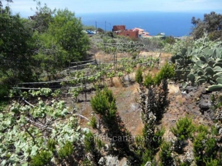 Land for Sale, La Matanza, Tenerife - IC-VTU9408 5