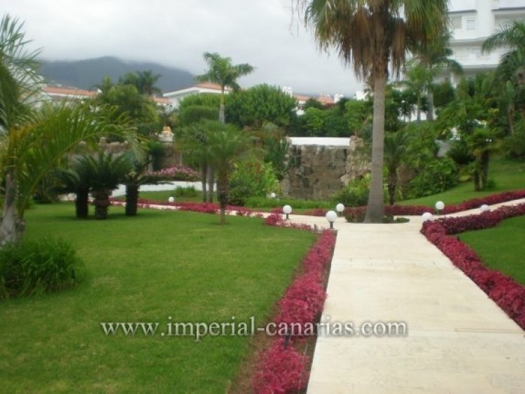 1 Bed  Flat / Apartment to Rent, Puerto de la Cruz, Tenerife - IC-AAP8292 3