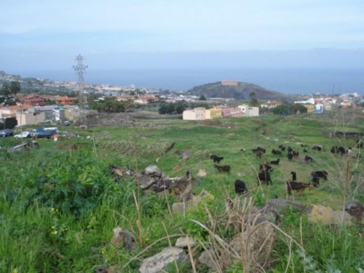 Land for Sale, La Orotava, Tenerife - IC-70495 2