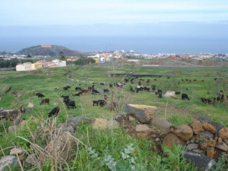 Land for Sale, La Orotava, Tenerife - IC-70495 4