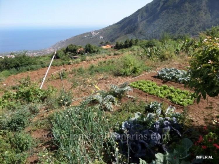 Villa/House for Sale, La Orotava, Tenerife - IC-VTR9744 3