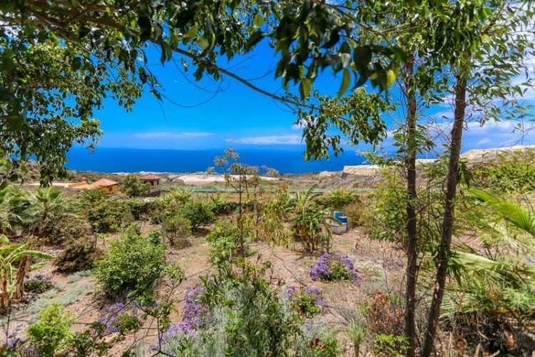 2 Bed  Country House/Finca for Sale, Alcala, Tenerife - YL-PW147 1
