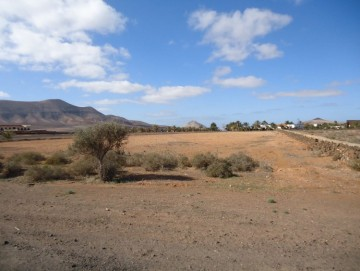 Land for Sale, Oliva, La, Las Palmas, Fuerteventura - DH-VSLOLIVATERR4-0320