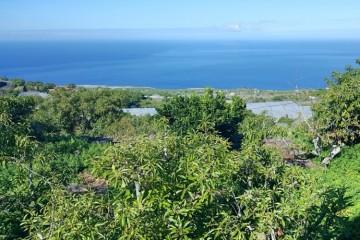 Villa/House for Sale, La Punta, Tijarafe, La Palma - LP-Ti213