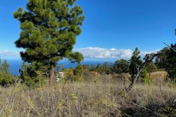 Villa/House for Sale, La Rosa, Puntagorda, La Palma - LP-P82