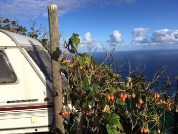Land for Sale, Los Realejos, Tenerife - IC-VTU10789