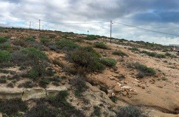 Land for Sale, Arico, Tenerife - VC-29603726