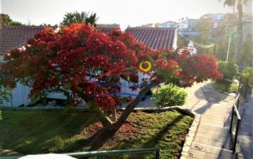 1 Bed  Villa/House to Rent, Arguineguin, Gran Canaria - NB-2653