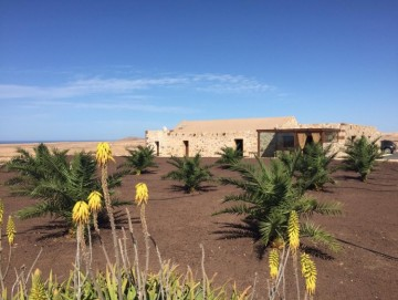 3 Bed  Villa/House for Sale, Tindaya, Las Palmas, Fuerteventura - DH-VPTVITINDA-0221