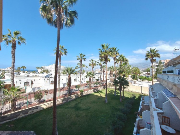 1 Bed  Flat / Apartment for Sale, Playa De Las Americas, Arona, Tenerife - AZ-1537 3