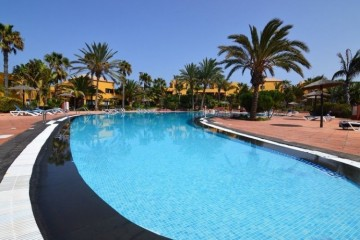 1 Bed  Flat / Apartment for Sale, Corralejo, Las Palmas, Fuerteventura - DH-XVPTAP1COTI84B-221