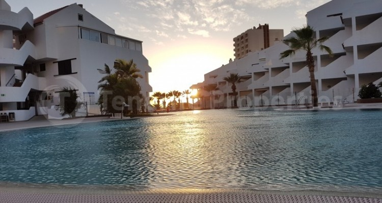 1 Bed  Flat / Apartment for Sale, Los Cristianos, Tenerife - TP-21070 3