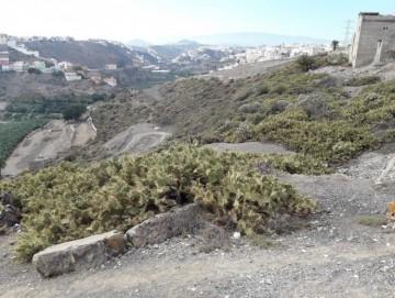 Land for Sale, Las Palmas de Gran Canaria, LAS PALMAS, Gran Canaria - BH-7855-HER-2912