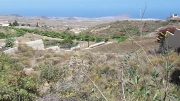Land for Sale, San Miguel de Abona, Tenerife - MP-LA053C