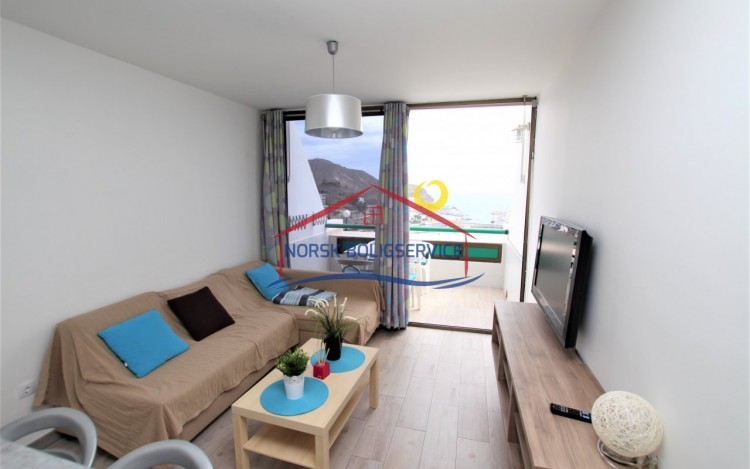 1 Bed  Flat / Apartment to Rent, Puerto Rico, Gran Canaria - NB-962 6