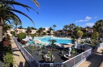 1 Bed  Flat / Apartment for Sale, Corralejo, Las Palmas, Fuerteventura - DH-XVPTAP1CLDPB114-621