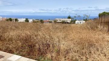 Land for Sale, Puerto de la Cruz, Tenerife - IC-VTU10953