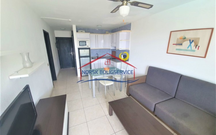 1 Bed  Flat / Apartment to Rent, Puerto Rico, Gran Canaria - NB-2724 2