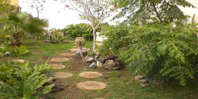 4 Bed  Villa/House for Sale, Chio, Tenerife - SA-5143 14