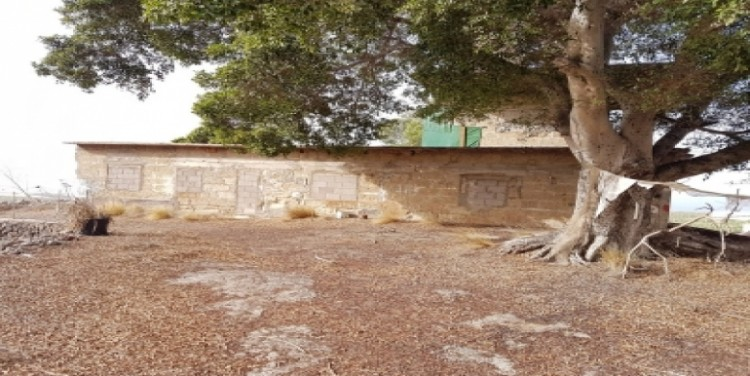 Land for Sale, Alcalá, Tenerife - SA-12046 1