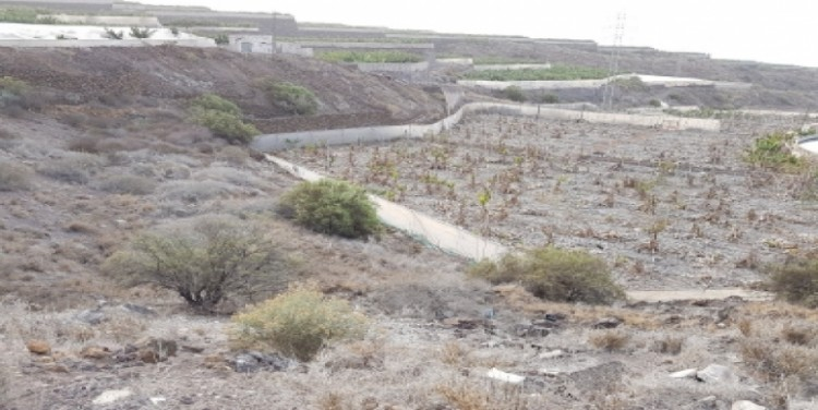 Land for Sale, Alcalá, Tenerife - SA-12046 6