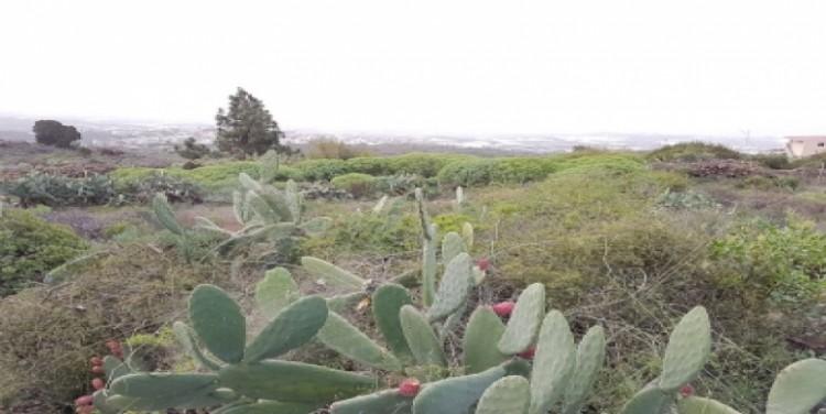 Land for Sale, Guía de Isora, Tenerife - SA-12045 3