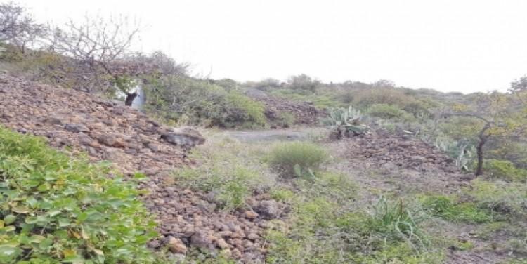 Land for Sale, Guía de Isora, Tenerife - SA-12045 4