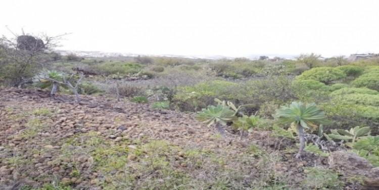 Land for Sale, Guía de Isora, Tenerife - SA-12045 6