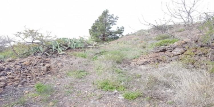 Land for Sale, Guía de Isora, Tenerife - SA-12045 8