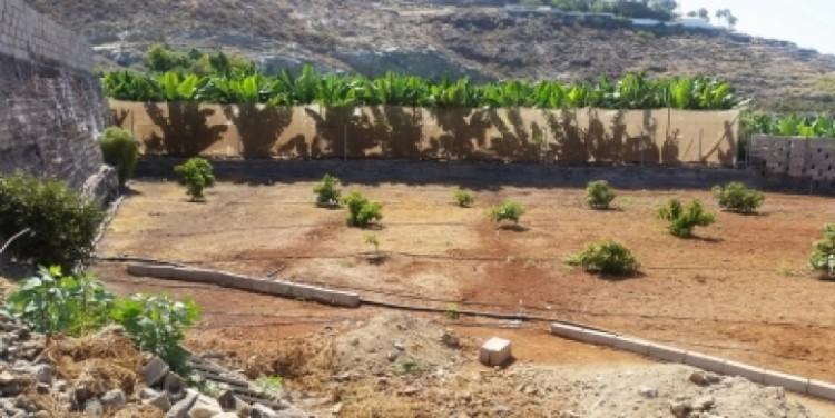 5 Bed  Land for Sale, Alcalá, Tenerife - SA-12043 15