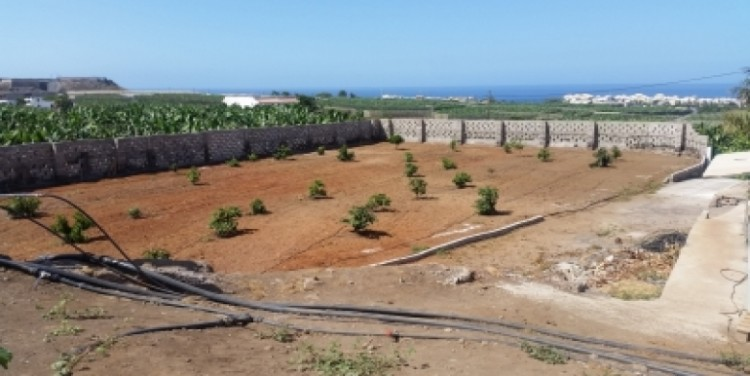 5 Bed  Land for Sale, Alcalá, Tenerife - SA-12043 6