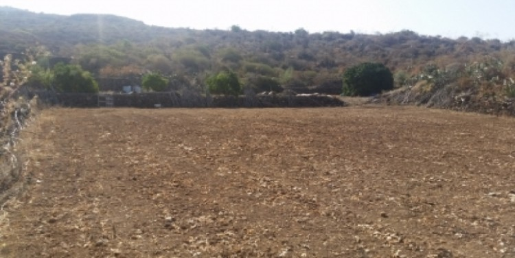 Land for Sale, Chio, Tenerife - SA-12037 14