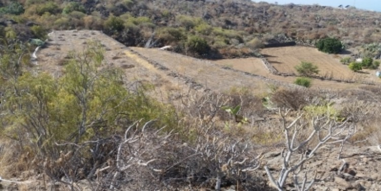 Land for Sale, Chio, Tenerife - SA-12037 17