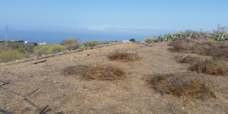 Land for Sale, Chio, Tenerife - SA-12037 7